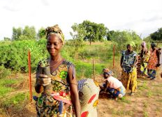 Water access for Sustainable Agriculture Senegal