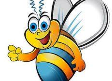 Une cagnotte pour fabriquer des ruches pour nos abeilles