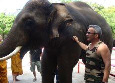 Sanctuaire des éléphants