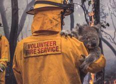 Help And Pray For Australia & Animals