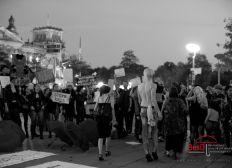 Politische Arbeit  gegen Einführung der Freierbestrafung in Deutschland