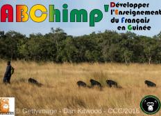 ABChimp : vers une alphabétisation des soigneurs du Centre de Conservation des Chimpanzés (Guinée)