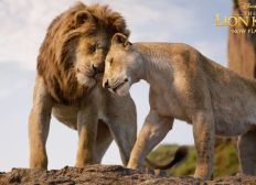 Regarder The Lion King 2019 Film Complet Streaming vf