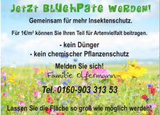 Blühpatenschaft - Gemeinsam für mehr Insektenschutz