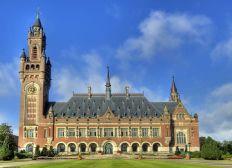 Voyage d'études à La Haye - M2 DRIUE - Promotion 2019/2020