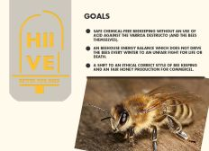 HIIVE better for bees