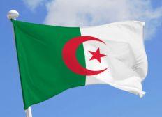 solidarité Algérie