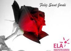 Rosa Solidaria Sant Jordi