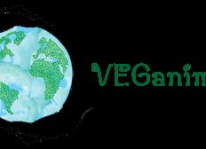 Dringend notwendiger Pferdeanhänger für Veganimals