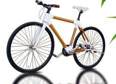 Das umweltfreundlichste Fahrrad der Welt