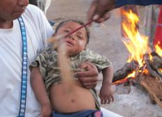 Huichols - Wixaritari - Aide d'urgence Covid19