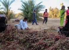 Kafr Haroun & Kafr Sarab Ramadan Donations