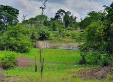 Unterstützung für die Uricurtiumba Plangage in Brasilien