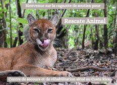 Sanctuaire animalier Rescate Animal au Costa Rica