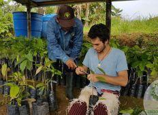 REBOISER EN AMAZONIE, EN EQUATEUR