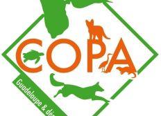 Association COPA GUADELOUPE : Fonds sauvetages chiens