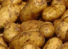 Saving the potato in chad