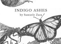 Publish Indigo Ashes