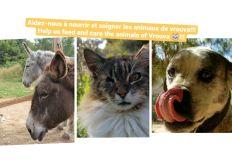 Aider à subvenir aux besoins de ses animaux ! Help support these animals !