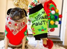 Christmas Jumper Day Donations - Groupon Goods UK