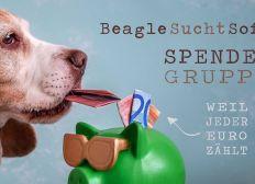 Hilfe für Beagle Buddy