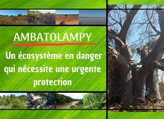 Ambatolampy, un écosystème en danger qui nécessite une urgente protection