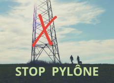 Stop Pylône - Brûlas (St Denis en Val)
