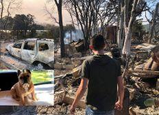 Pour soutenir Anthony et Flo sinistrés des incendies de Grimaud