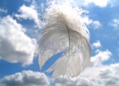Pour l'ange Dayan