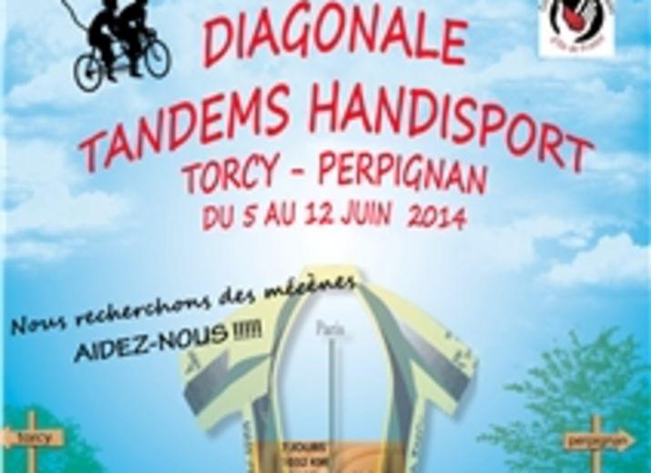 """DIAGONALE """"COUP DE PATTE AU HANDICAP"""""""