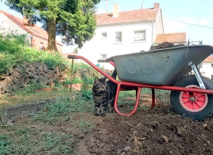 Projekt Gartenpavillon Eigenbau