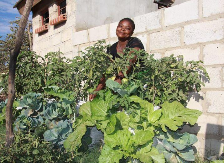 Des sacs potagers pour la Zambie / Sack gardens for Zambia