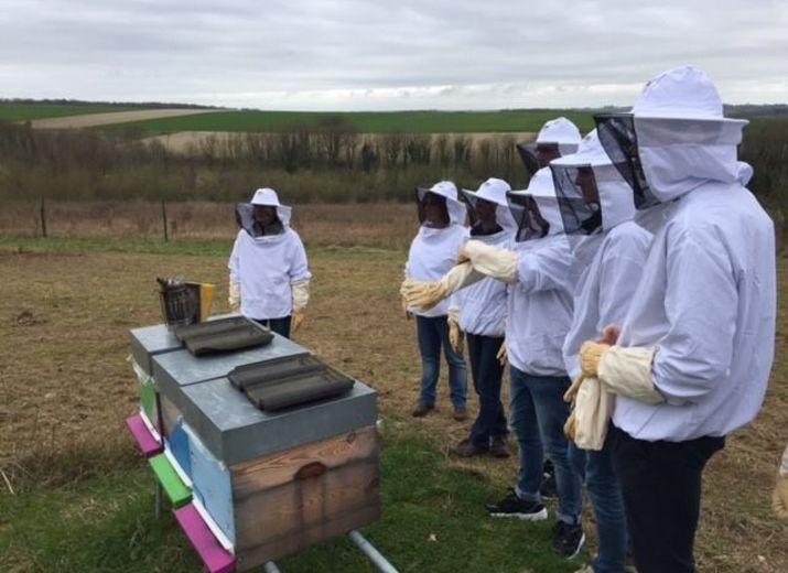 Une ruche à La Mala