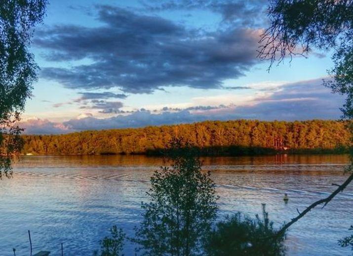 Waldumwandlung - 6 Hektar zusätzlichen Wald schaffen / Natur-Erholungsort kämpft um den Fortbestand