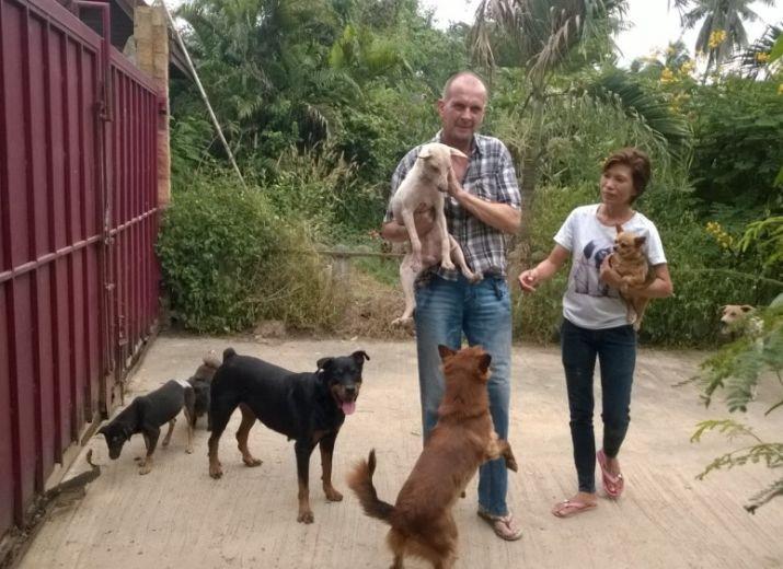 Gemeinsam das Leben von 400 Hunden retten!