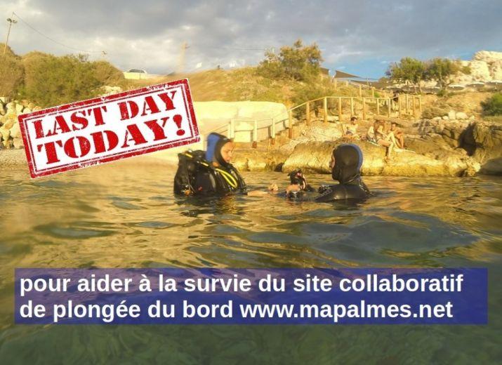 Pour soutenir Marseille A Palmes V2.0