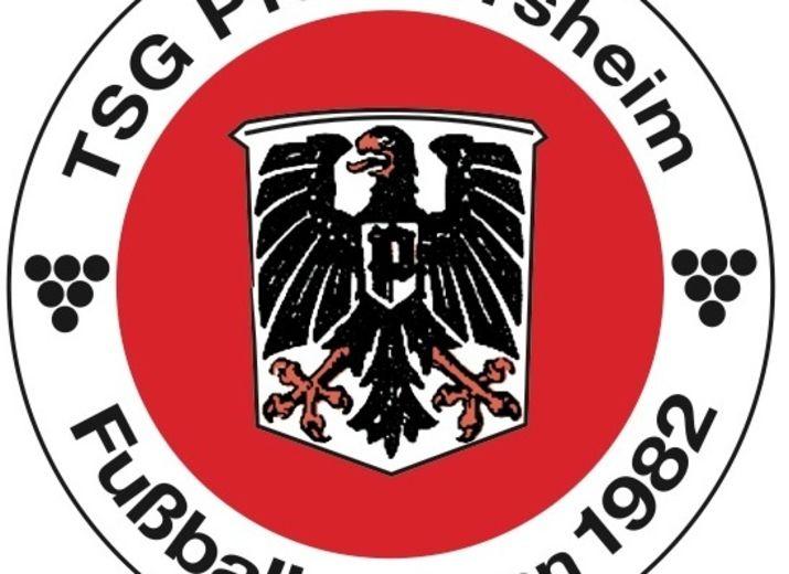 Kunstrasen für die Jugendabteilung der TSG Pfeddersheim Fussball e.V.