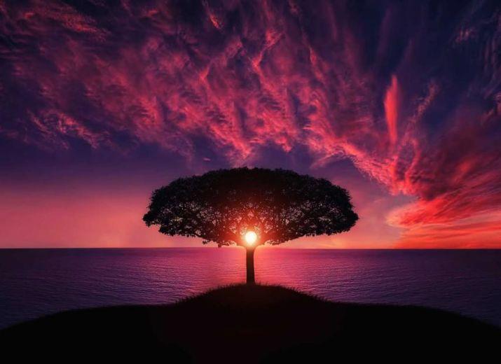 ouvrage sur le bien-être et la spiritualité