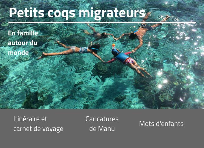 Petits Coqs Migrateurs pour DIDA (D'ici et d'ailleurs)