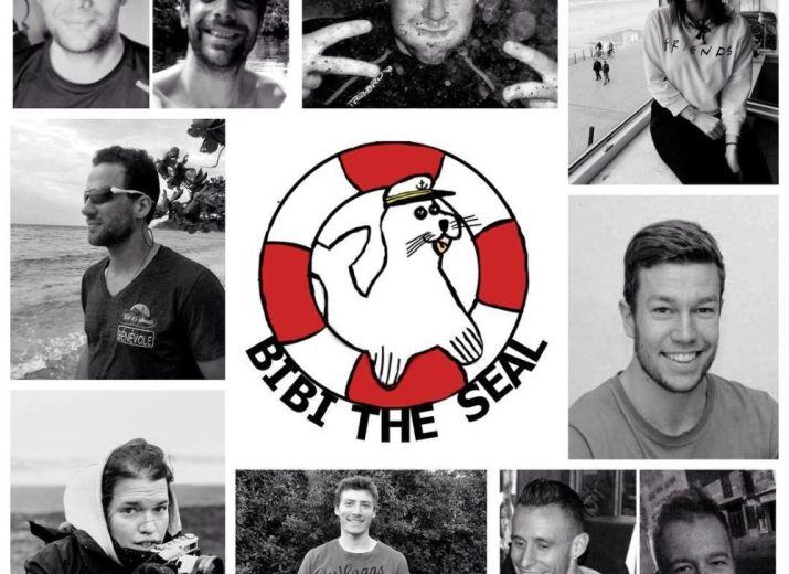 Bibi the seal