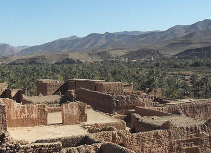 Financement de formation pour des porteurs de projet agricole bio dans la vallée du Drâa, Maroc