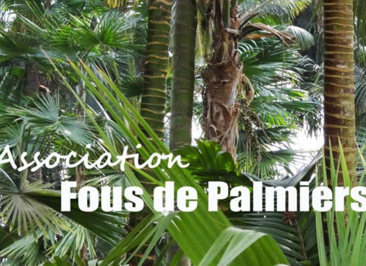 ASSOCIATION FOUS DE PALMIERS