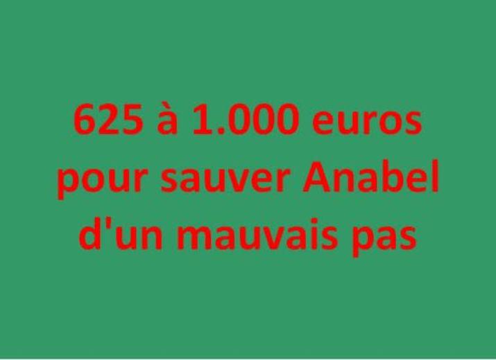 625 à 1.000 euros pour sauver Anabel d'un mauvais pas