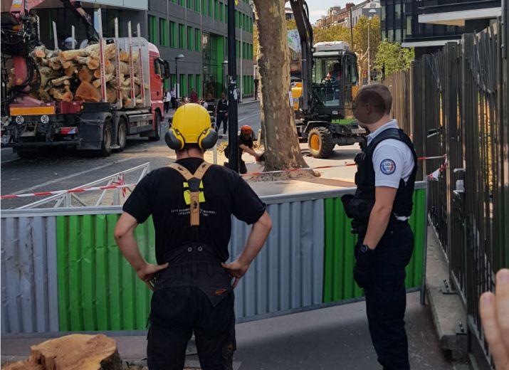 Massacre à la tronçonneuse: Projet Jean Jaurès à Montrouge