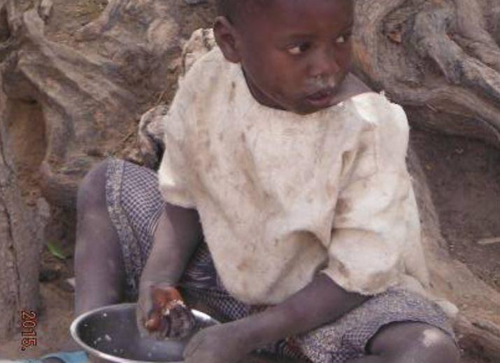 auto suffisance alimentaire village de Banconi Mali
