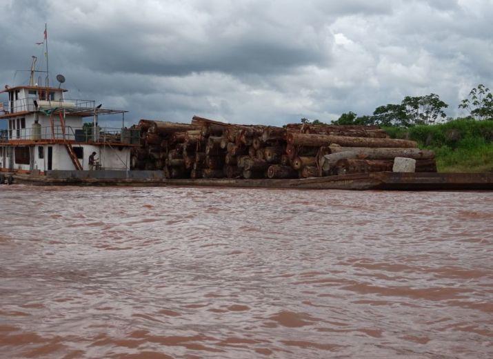 AIDEZ NOUS S.V.P. AVEC VOTRE DONATION DE LUTTER CONTRE LA DÉFORESTATION ET LA PAUVRETÉ DES INDIGÈNES DANS L'AMAZONIE