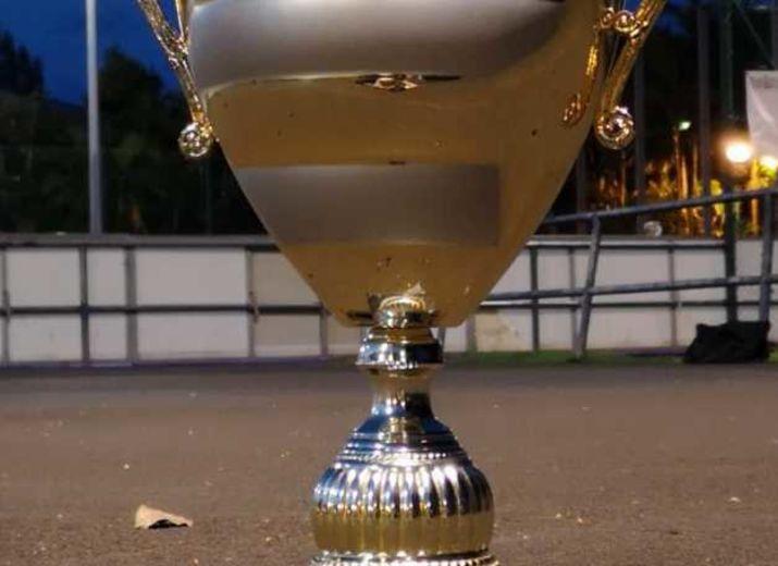 1/4 DE FINALE CHAMPIONNAT DE FRANCE HOCKEY IN LINE