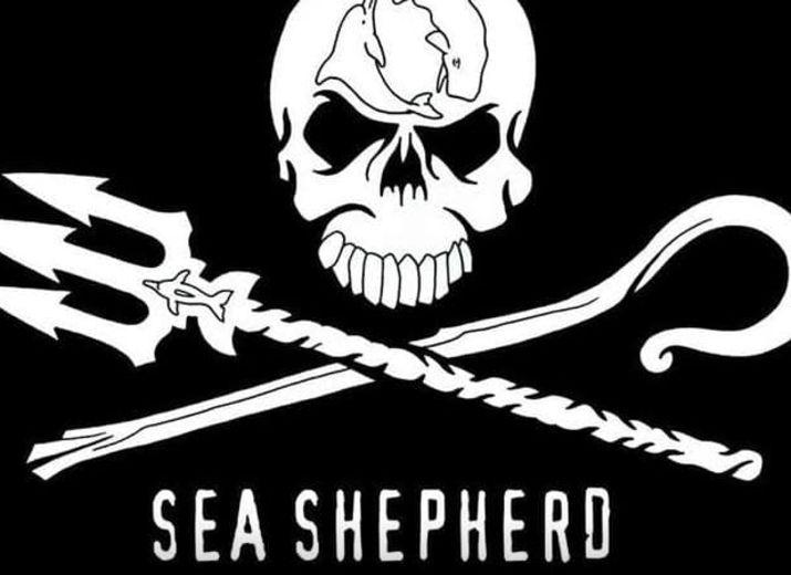 Sea Shepherd à la Baleine - Défendons les Océans !