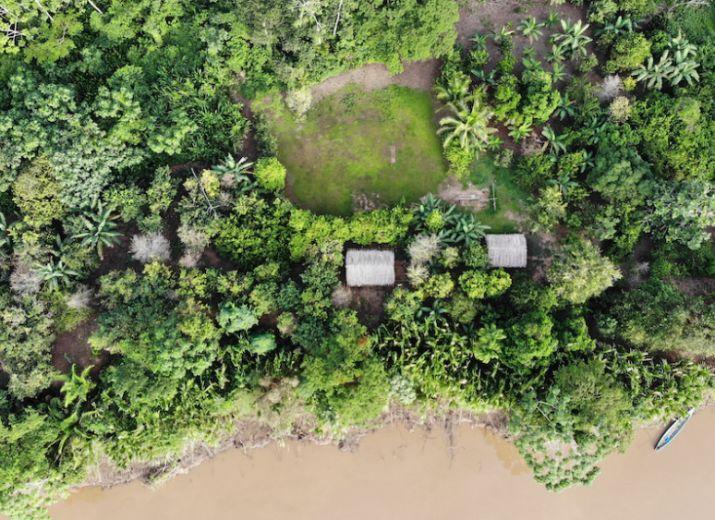 COATI - Réserve Amazonienne