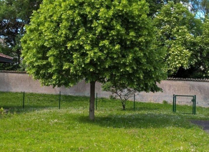 Un jardin pour l'Ehpad des Ombelles à TOUL